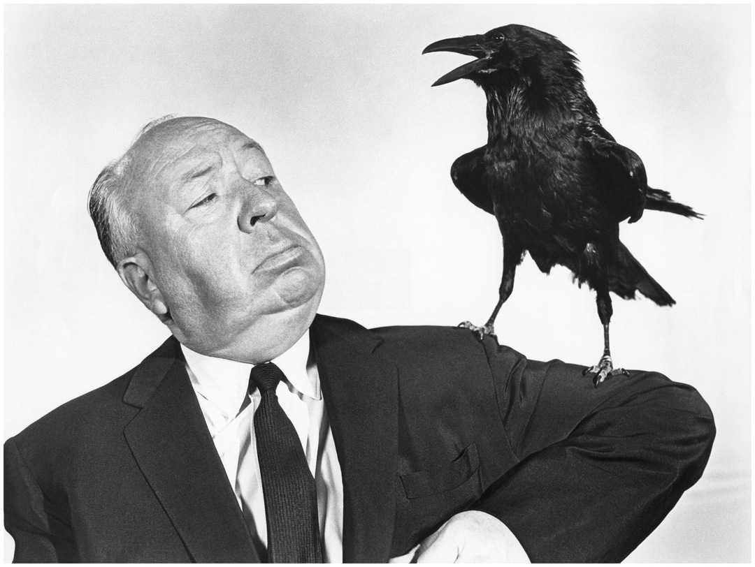 alfred hitchcock paper News about alfred hitchcock, including commentary and archival articles published in the new york times.
