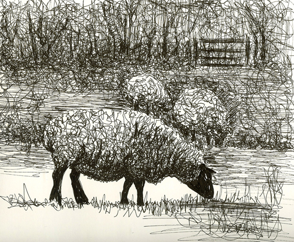 henry-moore-sheep-drawing-2-1379802785_org (1)