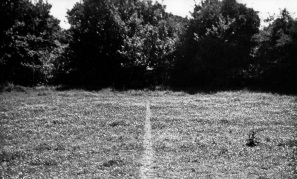 Risultati immagini per richard long line made by walking